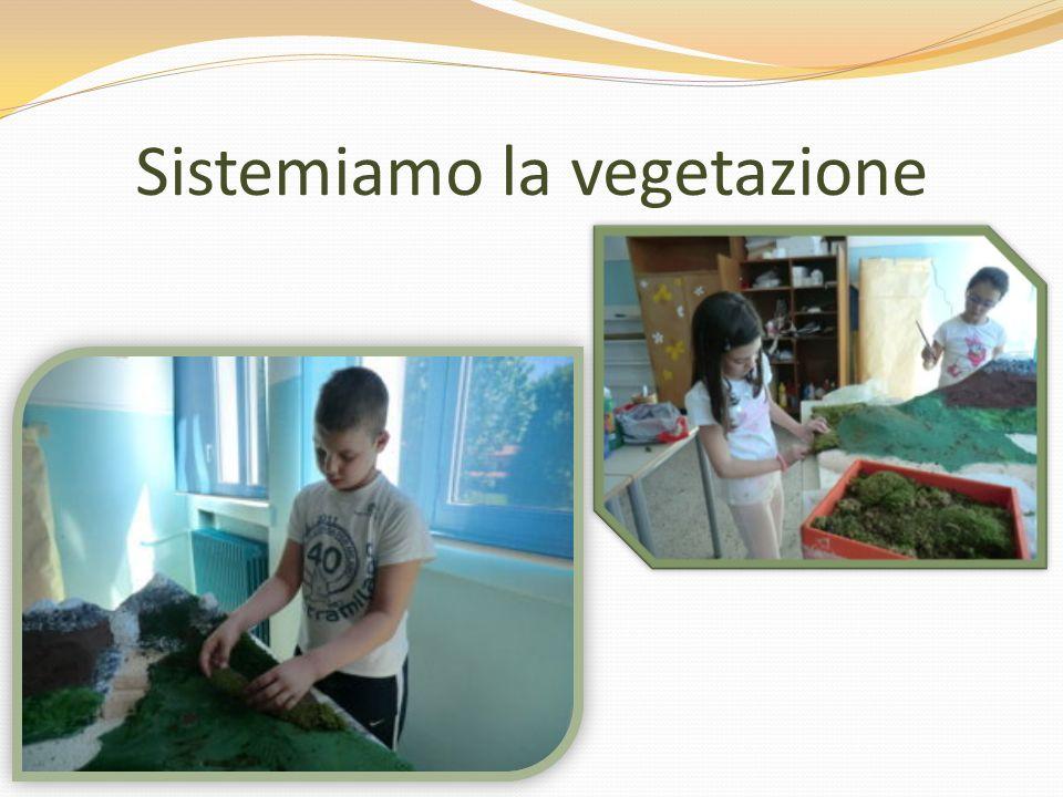 Sistemiamo la vegetazione
