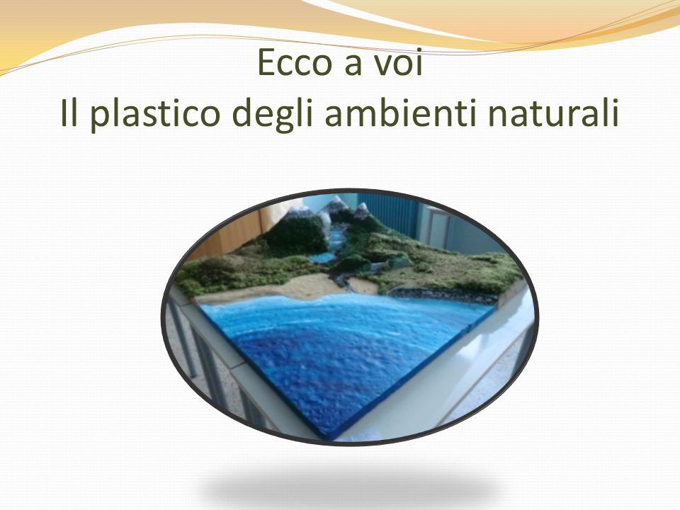 Ecco a voi Il plastico degli ambienti naturali