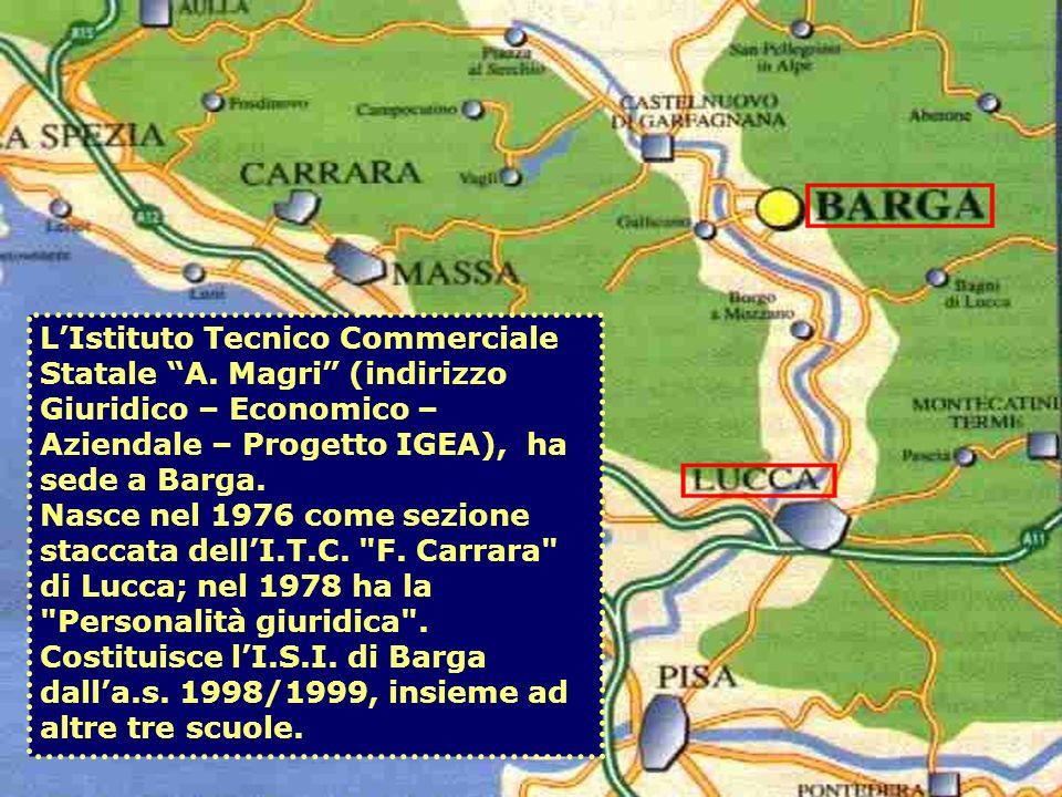 LIstituto Tecnico Commerciale Statale A. Magri (indirizzo Giuridico – Economico – Aziendale – Progetto IGEA), ha sede a Barga. Nasce nel 1976 come sez