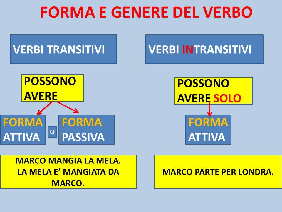 FORMA E GENERE DEL VERBO VERBI TRANSITIVI VERBI INTRANSITIVI FORMA ATTIVA FORMA PASSIVA FORMA ATTIVA POSSONO AVERE POSSONO AVERE SOLO O MARCO MANGIA L