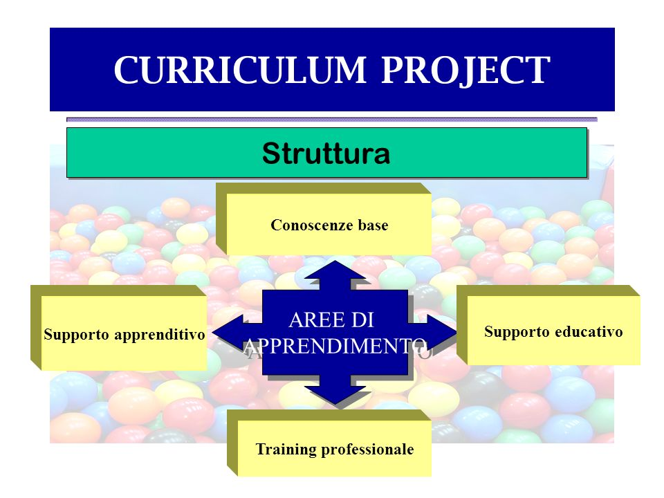 CURRICULUM PROJECT Struttura AREE DI APPRENDIMENTO AREE DI APPRENDIMENTO Supporto apprenditivo Conoscenze base Supporto educativo Training professiona