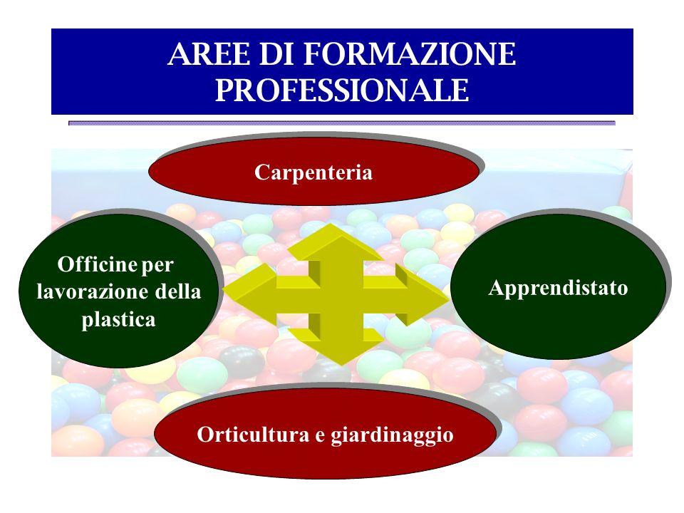 AREE DI FORMAZIONE PROFESSIONALE Carpenteria Officine per lavorazione della plastica Officine per lavorazione della plastica Apprendistato Orticultura