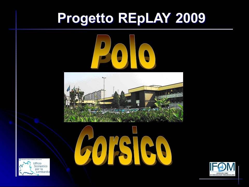 Progetto REpLAY 2009