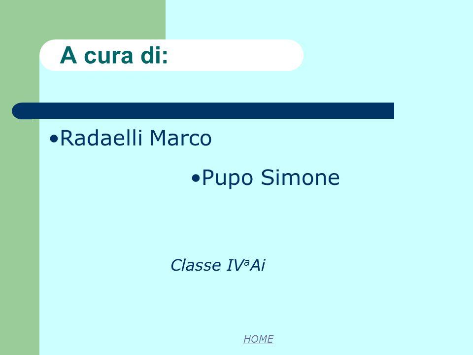 Radaelli Marco Pupo Simone Classe IV a Ai A cura di: HOME