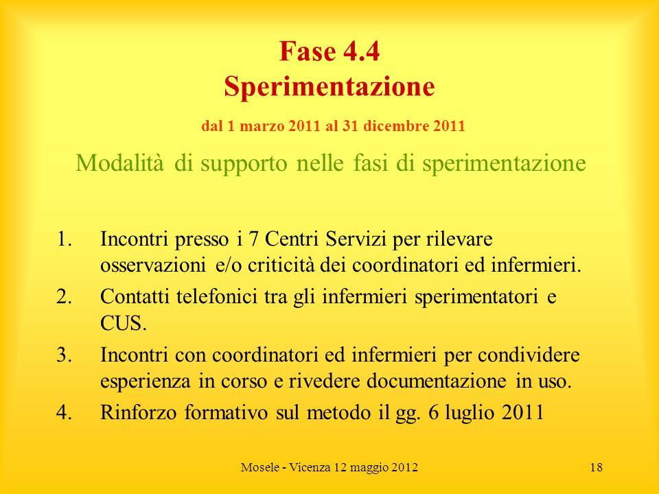 Mosele - Vicenza 12 maggio 201218 Fase 4.4 Sperimentazione dal 1 marzo 2011 al 31 dicembre 2011 Modalità di supporto nelle fasi di sperimentazione 1.I