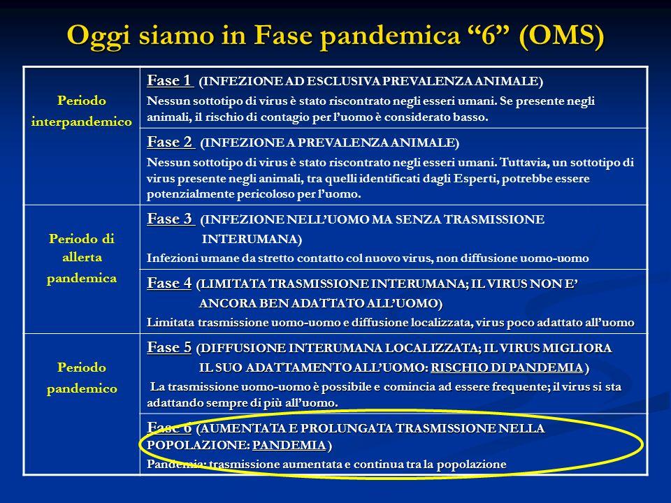Oggi siamo in Fase pandemica 6 (OMS) Periodo interpandemico Fase 1 Fase 1 (INFEZIONE AD ESCLUSIVA PREVALENZA ANIMALE) Nessun sottotipo di virus è stat