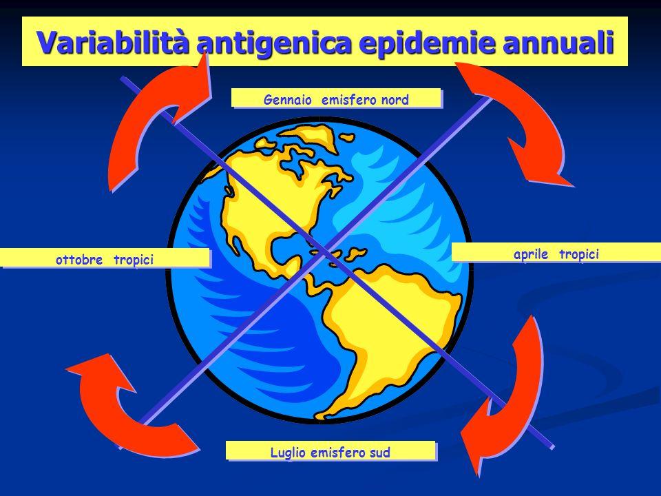 Variabilità antigenica epidemie annuali Luglio emisfero sud Gennaio emisfero nord aprile tropici ottobre tropici