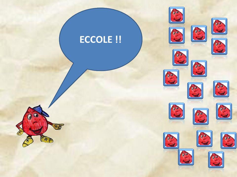 HO TANTE SORELLE ECCOLE !!