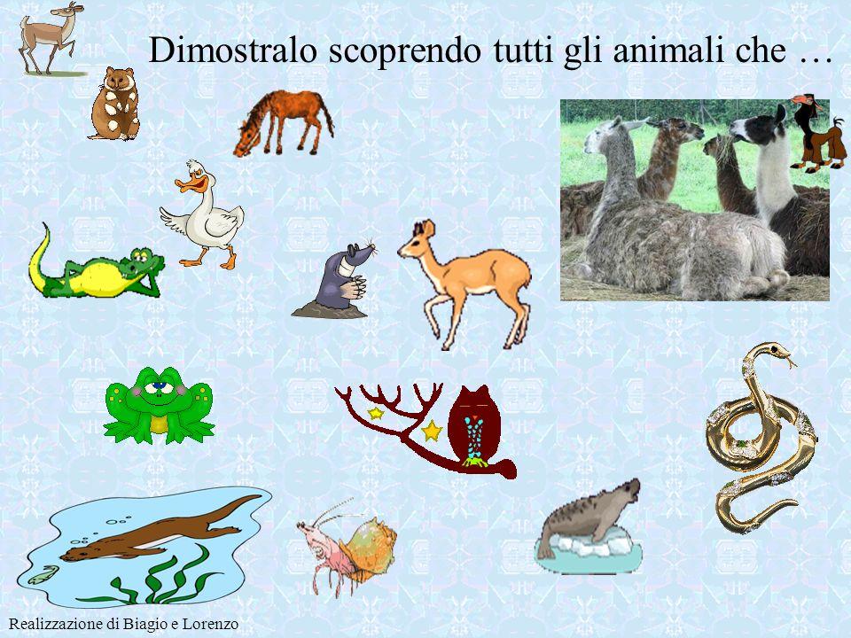 Siete esperti di ANIMALI ? Realizzazione di Biagio e Lorenzo