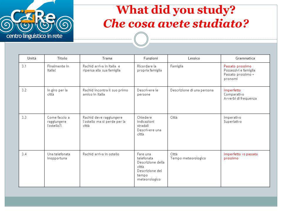 What did you study.Che cosa avete studiato.