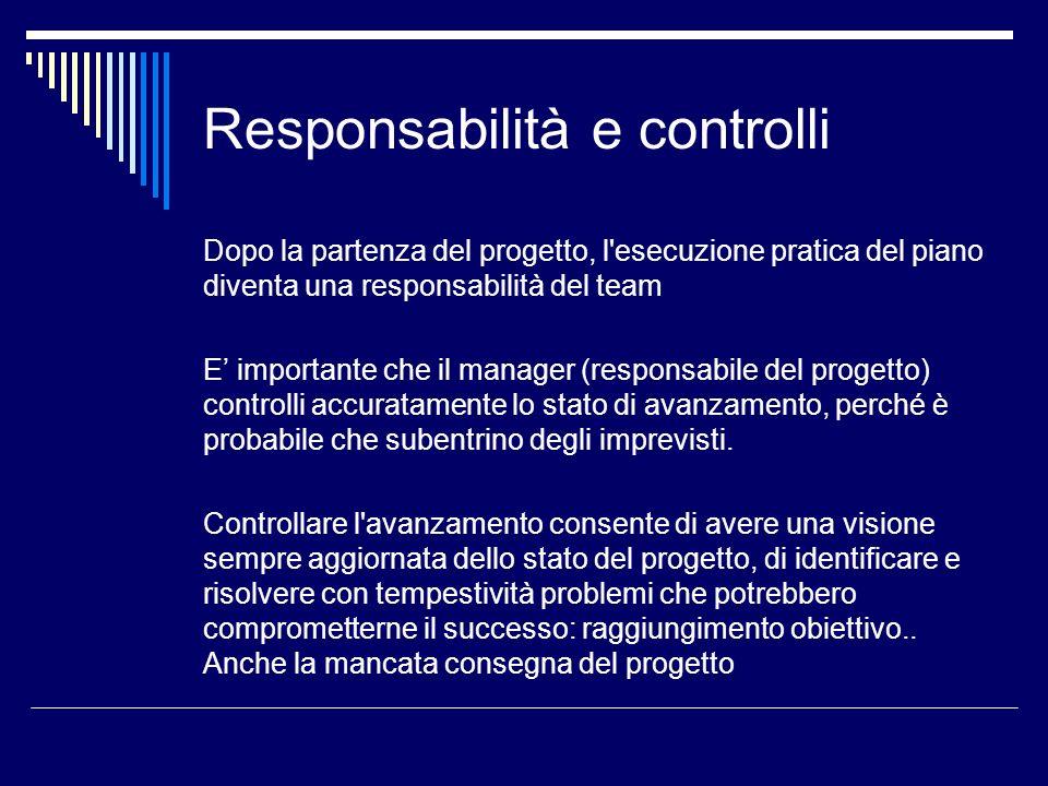 Responsabilità e controlli Dopo la partenza del progetto, l'esecuzione pratica del piano diventa una responsabilità del team E importante che il manag
