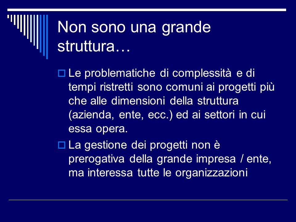 Non sono una grande struttura… Le problematiche di complessità e di tempi ristretti sono comuni ai progetti più che alle dimensioni della struttura (a