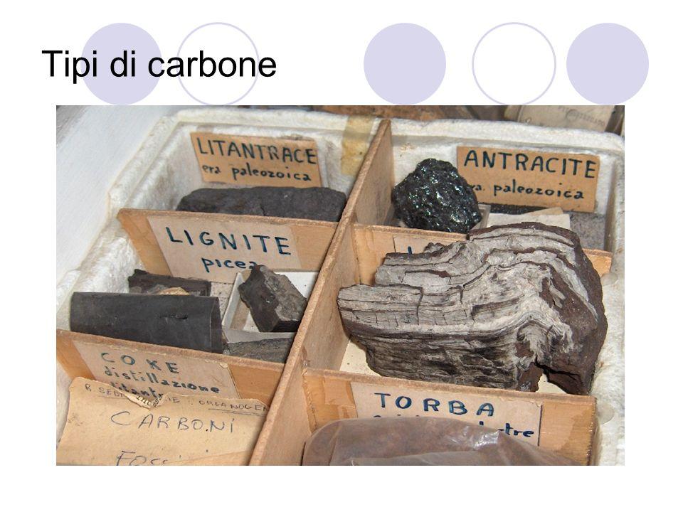 Vari tipi di carbone Torba: deriva da piante erbacee, presenta un aspetto spugnoso e filamentoso di colore scuro.