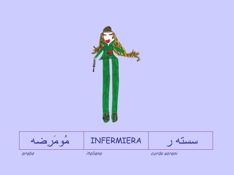 طَبِيب DOTTORE دكتۆر araboitalianocurdo sorani