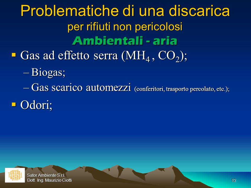 12 Problematiche di una discarica per rifiuti non pericolosi Ambientali - aria Gas ad effetto serra (MH 4, CO 2 ); Gas ad effetto serra (MH 4, CO 2 );