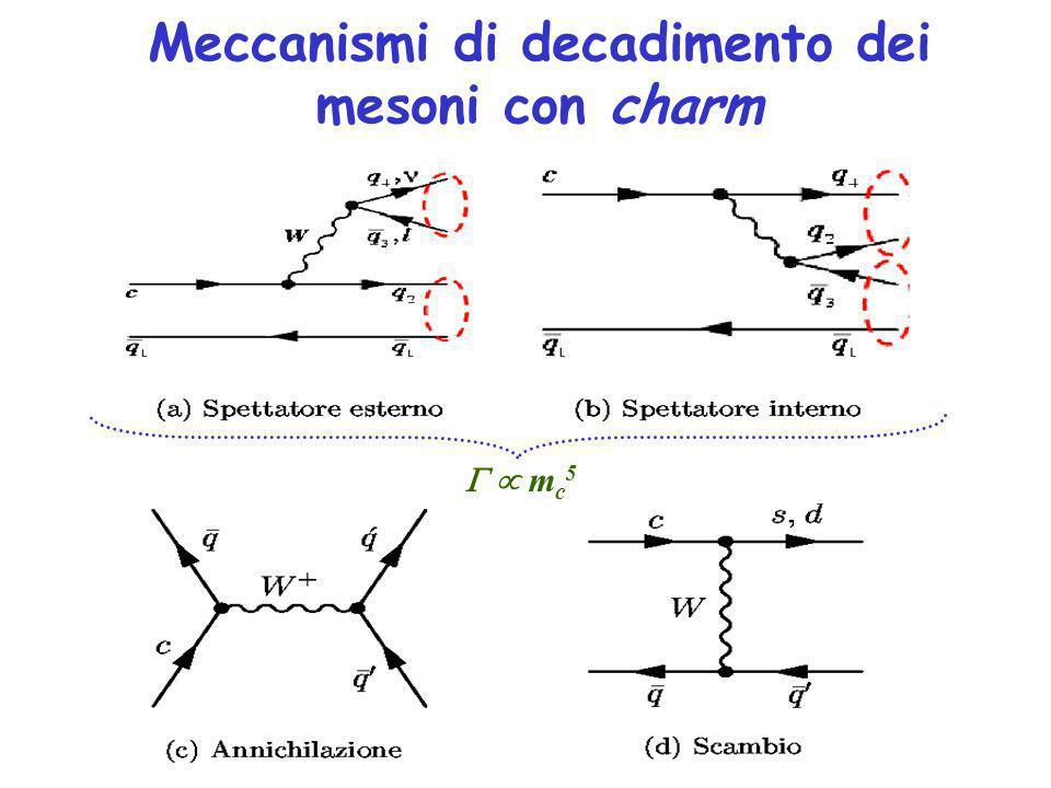 Meccanismi di decadimento dei mesoni con charm m c 5