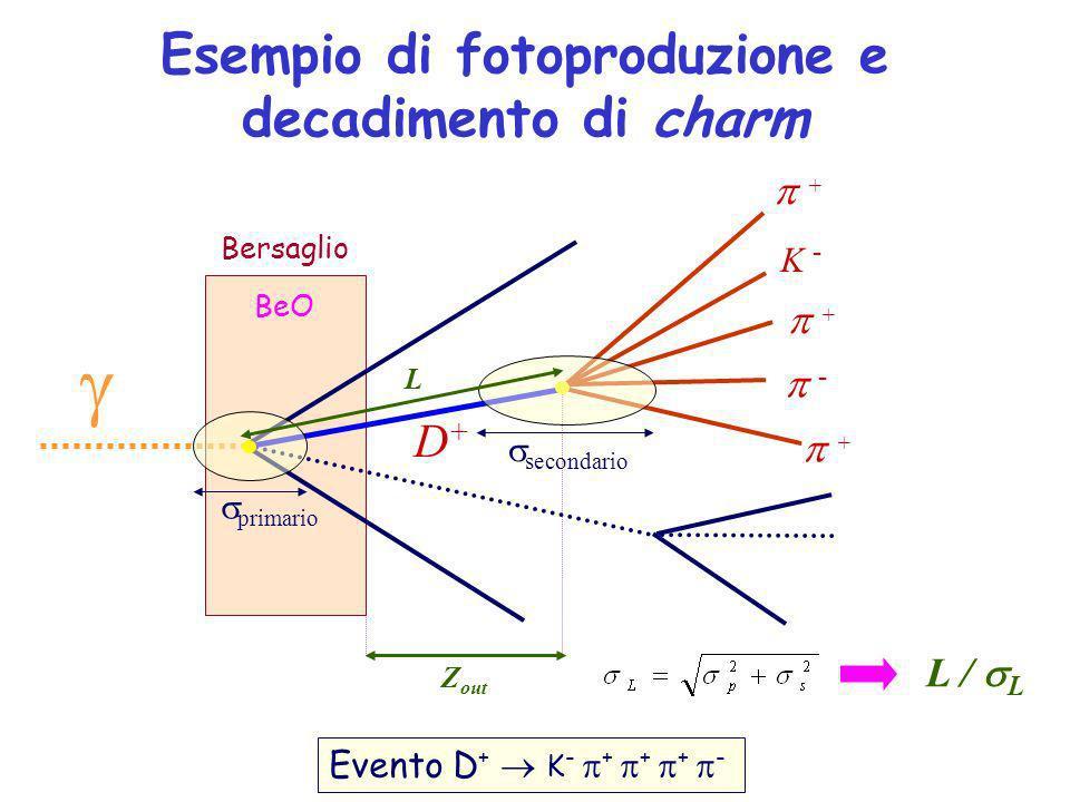 primario Esempio di fotoproduzione e decadimento di charm L Bersaglio BeO D+D+ secondario Evento D + K - + + + - K - + + - + Z out L / L