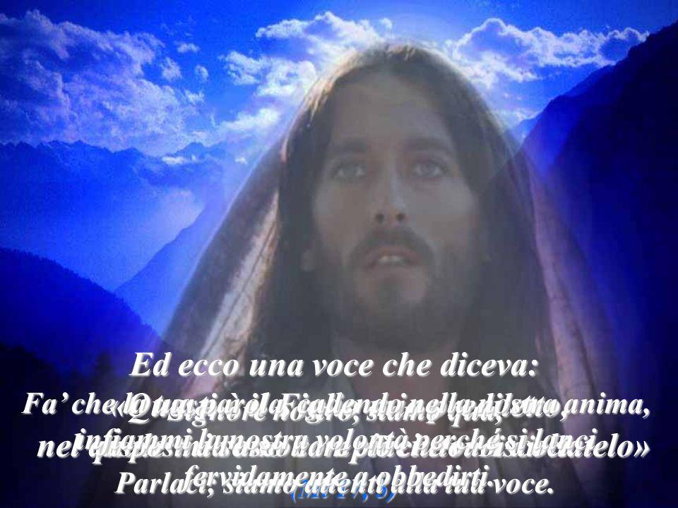 Vultum tuum, Domine, requiram, il tuo volto, Signore, io cerco.