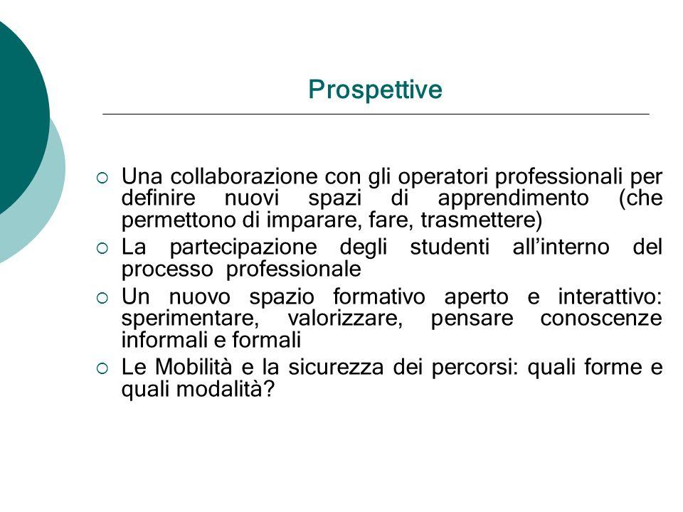 Prospettive Una collaborazione con gli operatori professionali per definire nuovi spazi di apprendimento (che permettono di imparare, fare, trasmetter
