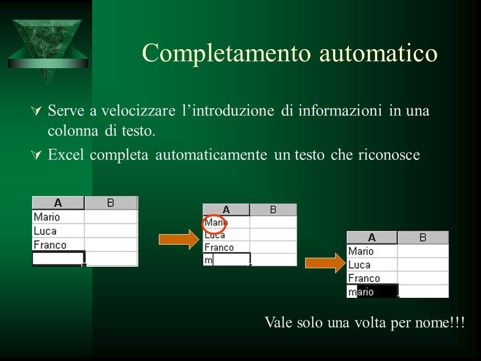 Completamento automatico Serve a velocizzare lintroduzione di informazioni in una colonna di testo. Excel completa automaticamente un testo che ricono