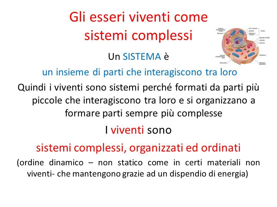 Gli esseri viventi come sistemi complessi Un SISTEMA è un insieme di parti che interagiscono tra loro Quindi i viventi sono sistemi perché formati da