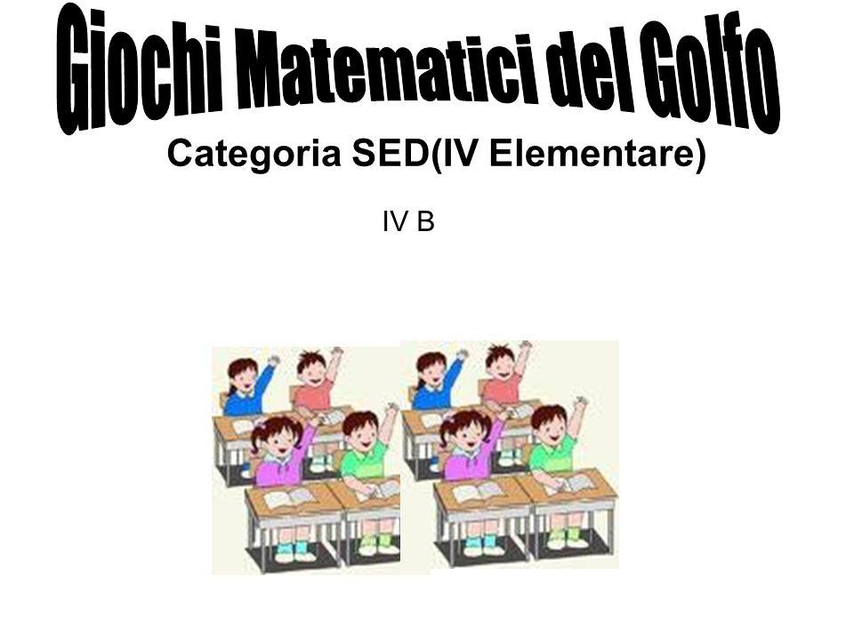 Categoria SED(IV Elementare) IV B