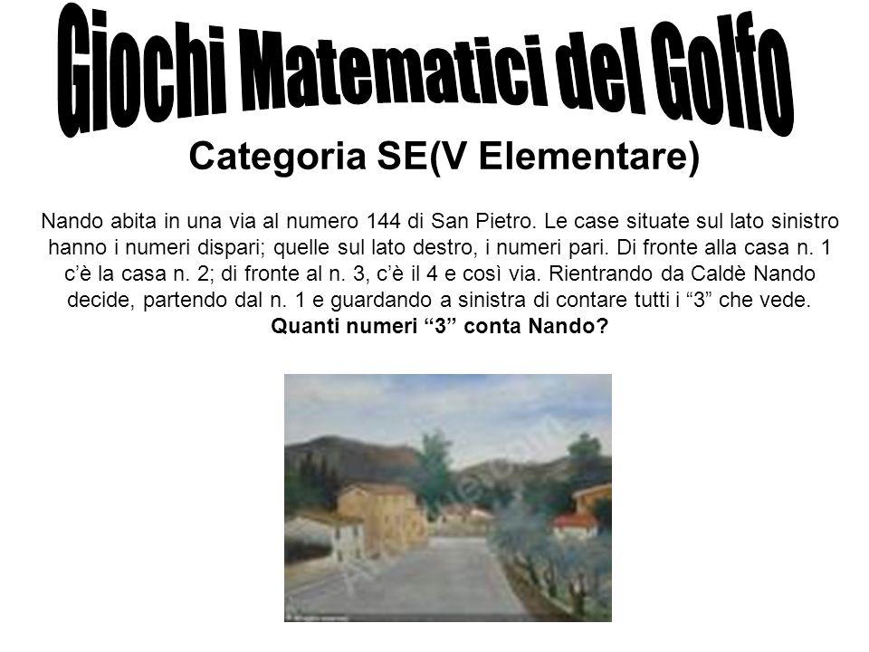 Categoria SE(V Elementare) Nando abita in una via al numero 144 di San Pietro. Le case situate sul lato sinistro hanno i numeri dispari; quelle sul la