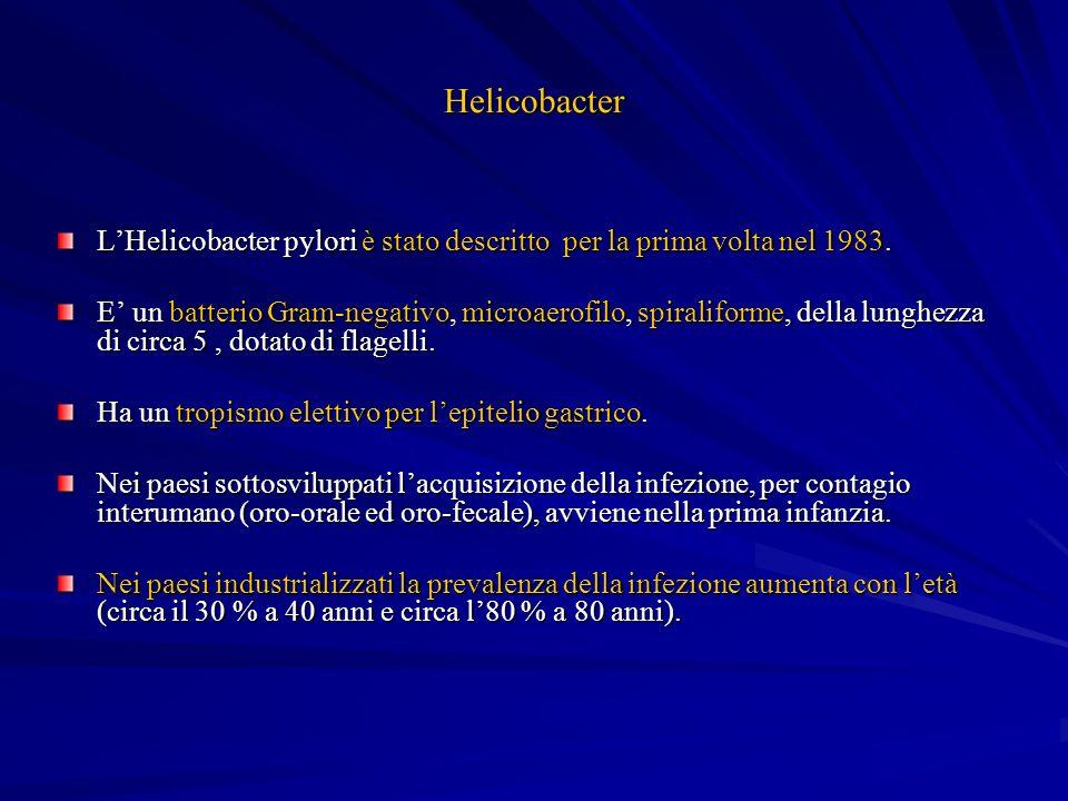 Helicobacter LHelicobacter pylori è stato descritto per la prima volta nel 1983. E un batterio Gram-negativo, microaerofilo, spiraliforme, della lungh