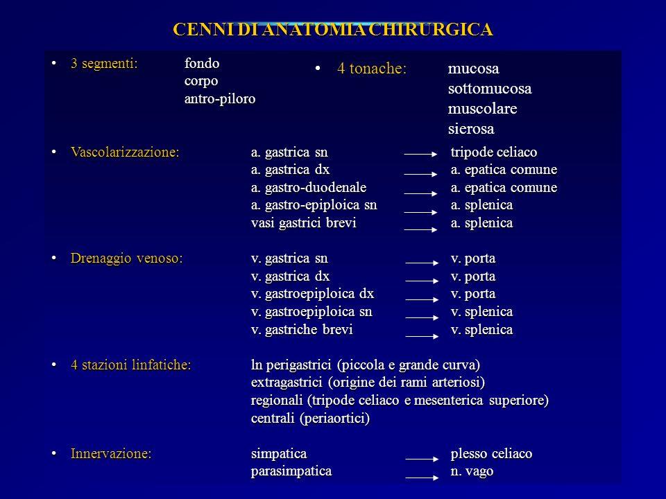 CENNI DI ANATOMIA CHIRURGICA 3 segmenti: fondo3 segmenti: fondocorpoantro-piloro Vascolarizzazione:a. gastrica sntripode celiacoVascolarizzazione:a. g
