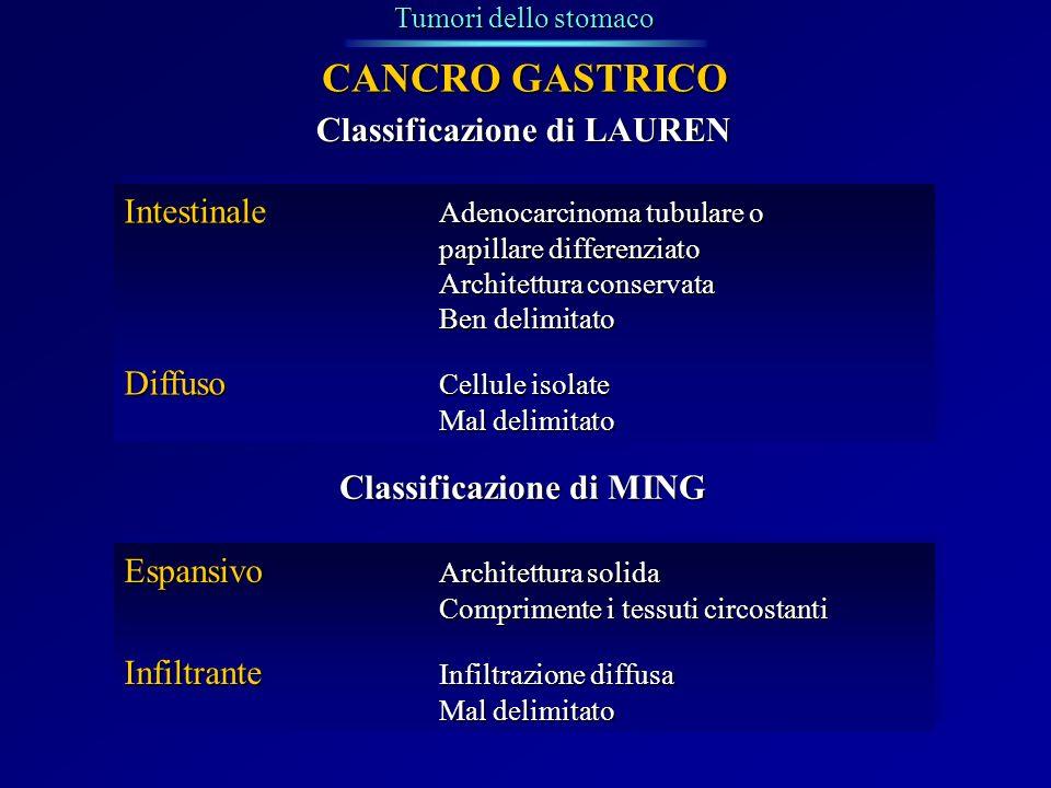 Tumori dello stomaco CANCRO GASTRICO Classificazione di LAUREN Intestinale Adenocarcinoma tubulare o papillare differenziato Architettura conservata B