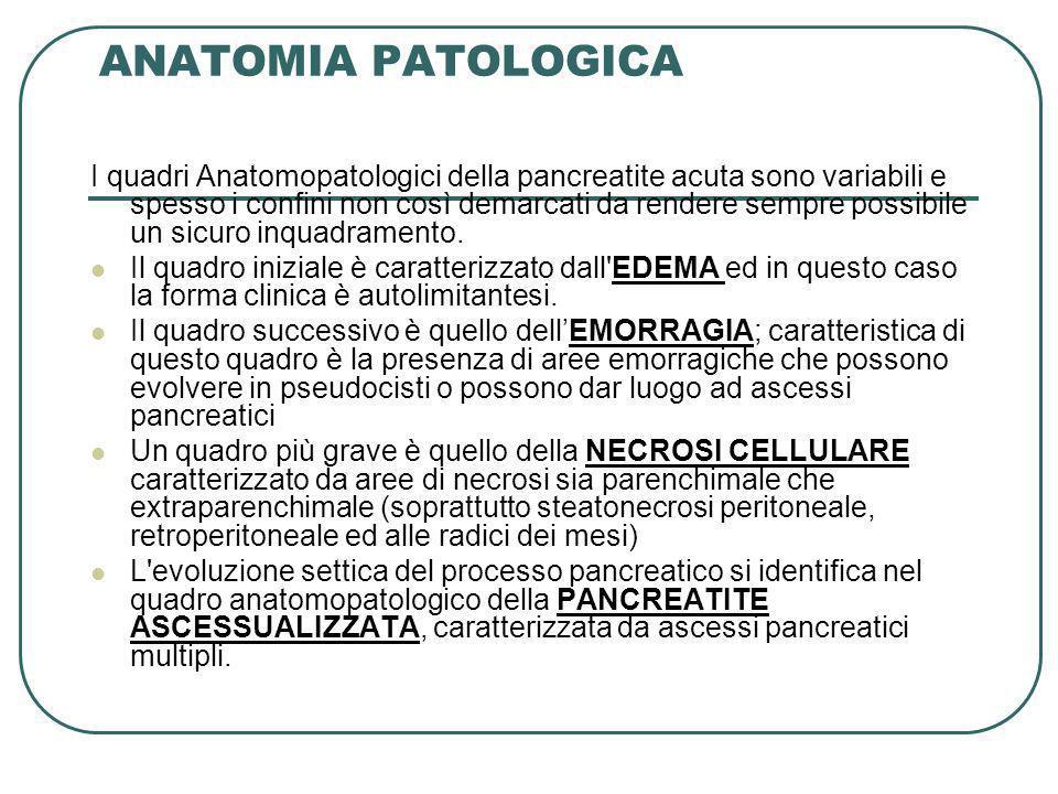 ANATOMIA PATOLOGICA I quadri Anatomopatologici della pancreatite acuta sono variabili e spesso i confini non così demarcati da rendere sempre possibil