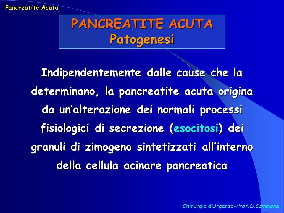 PANCREATITE ACUTA Patogenesi Chirurgia dUrgenza-Prof.O.Campione Indipendentemente dalle cause che la determinano, la pancreatite acuta origina da unal