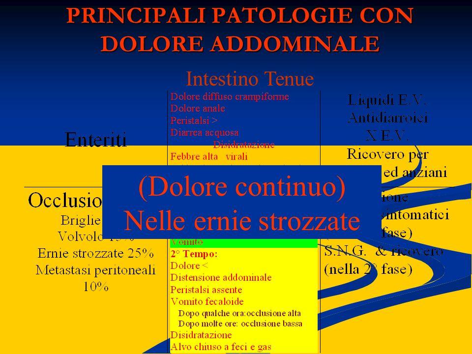 PRINCIPALI PATOLOGIE CON DOLORE ADDOMINALE Intestino Tenue (Dolore continuo) Nelle ernie strozzate