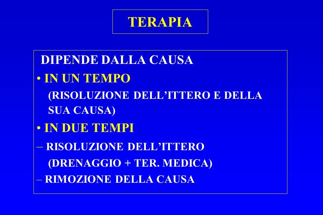TERAPIA DIPENDE DALLA CAUSA IN UN TEMPO (RISOLUZIONE DELLITTERO E DELLA SUA CAUSA) IN DUE TEMPI – RISOLUZIONE DELLITTERO (DRENAGGIO + TER. MEDICA) – R
