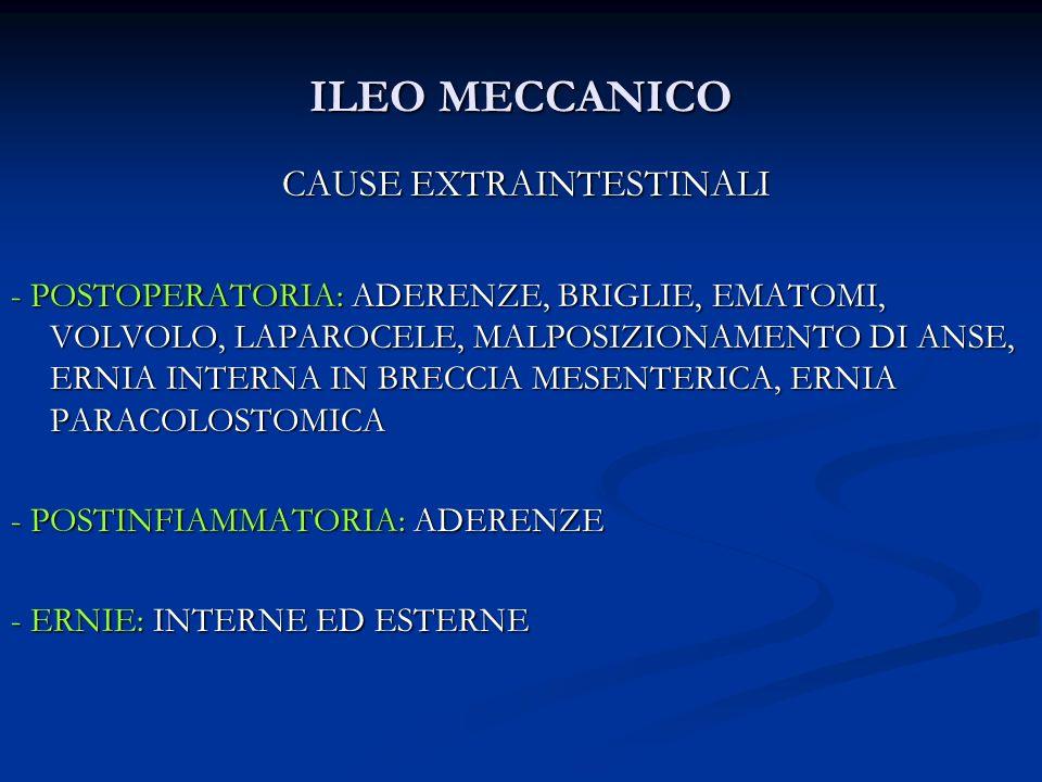 ILEO MECCANICO CAUSE EXTRAINTESTINALI CAUSE EXTRAINTESTINALI - POSTOPERATORIA: ADERENZE, BRIGLIE, EMATOMI, VOLVOLO, LAPAROCELE, MALPOSIZIONAMENTO DI A