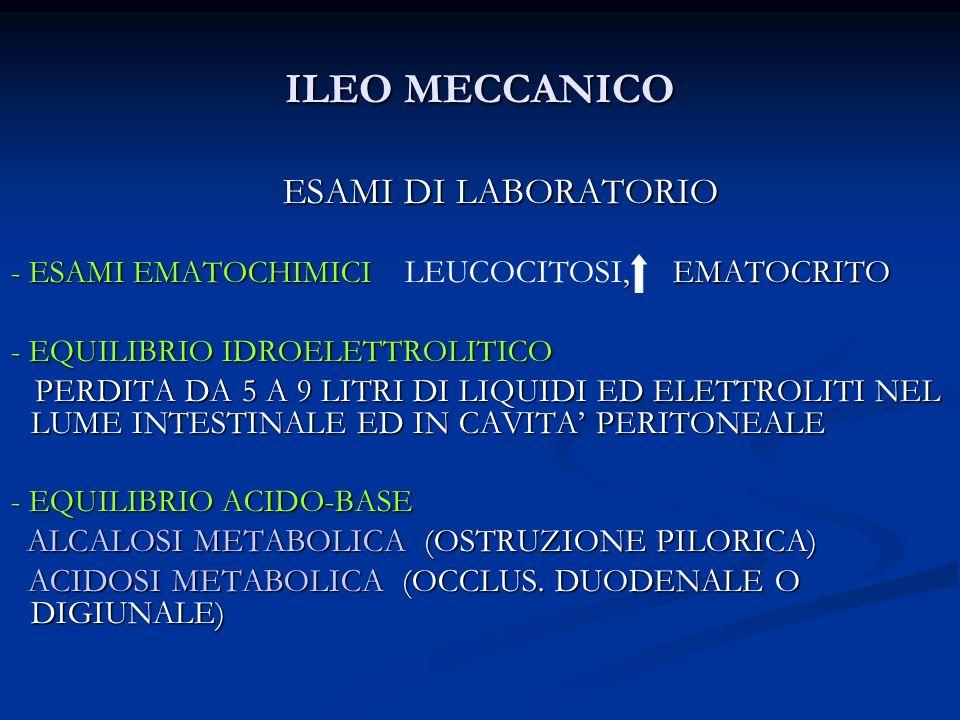 ILEO MECCANICO ESAMI DI LABORATORIO - ESAMI EMATOCHIMICI, EMATOCRITO - ESAMI EMATOCHIMICI LEUCOCITOSI, EMATOCRITO - EQUILIBRIO IDROELETTROLITICO - EQU
