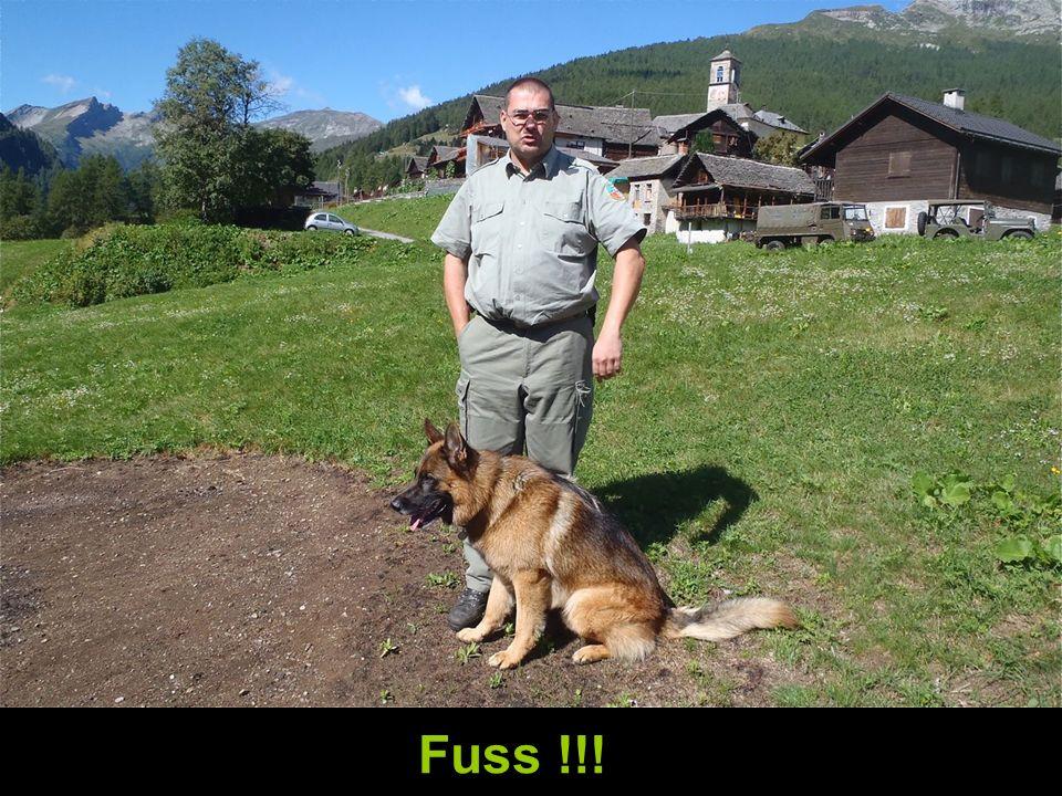 Fuss !!!