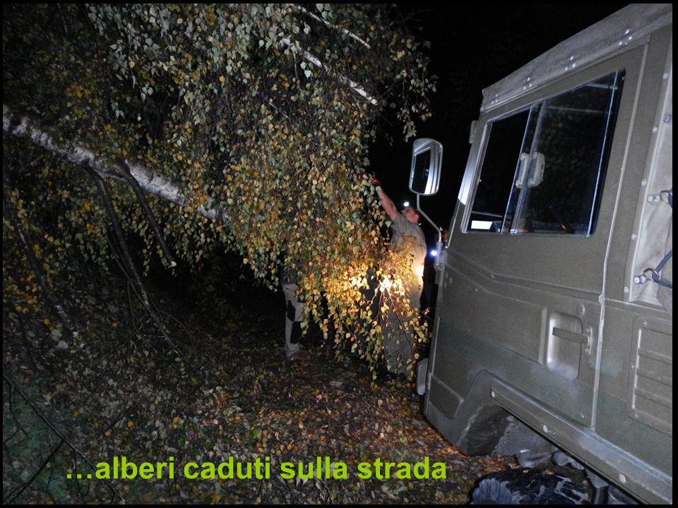 …alberi caduti sulla strada