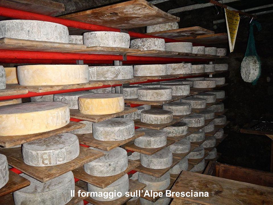 Il formaggio sullAlpe Bresciana
