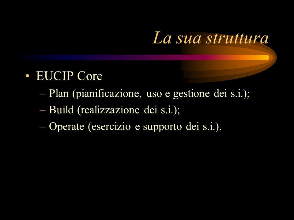 La sua struttura EUCIP Core –Plan (pianificazione, uso e gestione dei s.i.); –Build (realizzazione dei s.i.); –Operate (esercizio e supporto dei s.i.)