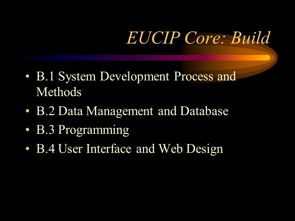 EUCIP Core: Build B.1 System Development Process and Methods B.2 Data Management and Database B.3 Programming B.4 User Interface and Web Design