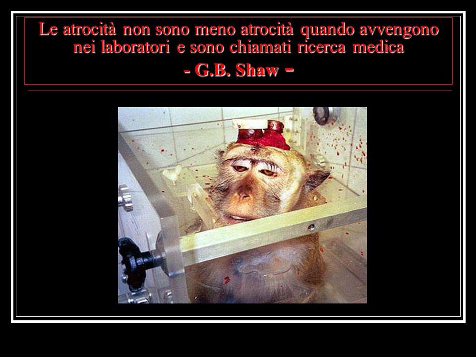 Le atrocità non sono meno atrocità quando avvengono nei laboratori e sono chiamati ricerca medica - G.B. Shaw -