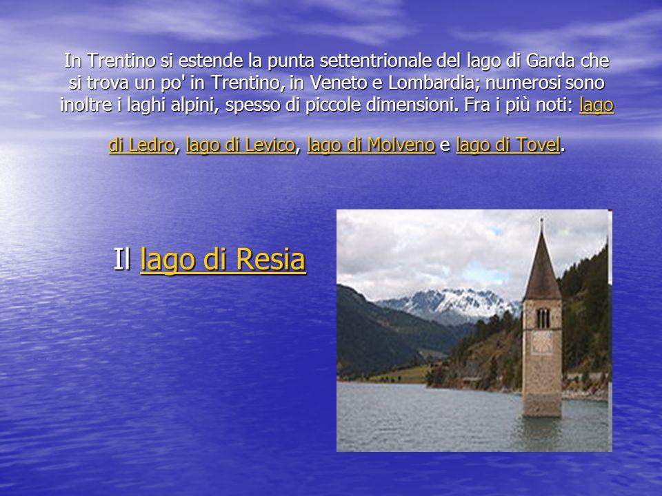 In Trentino si estende la punta settentrionale del lago di Garda che si trova un po' in Trentino, in Veneto e Lombardia; numerosi sono inoltre i laghi
