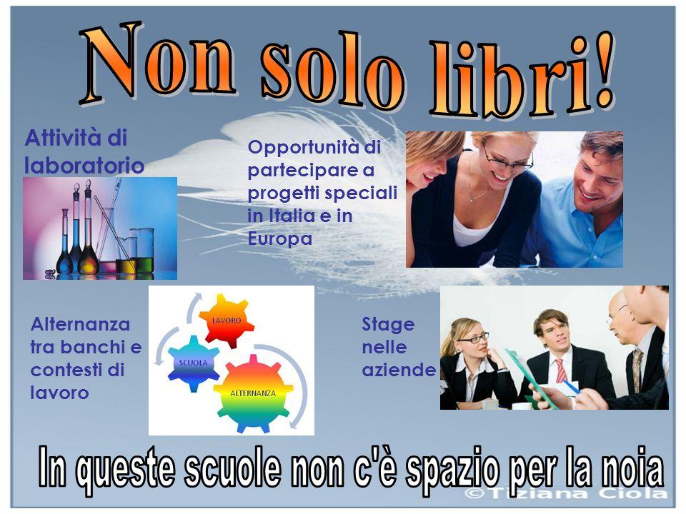 Attività di laboratorio Alternanza tra banchi e contesti di lavoro Opportunità di partecipare a progetti speciali in Italia e in Europa Stage nelle aziende