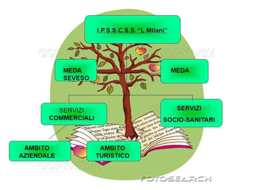 I.P.S.S.C.S.S. L Milani MEDA SEVESO MEDA SERVIZI COMMERCIALI SERVIZI SOCIO-SANITARI AMBITO AZIENDALE AMBITO TURISTICO
