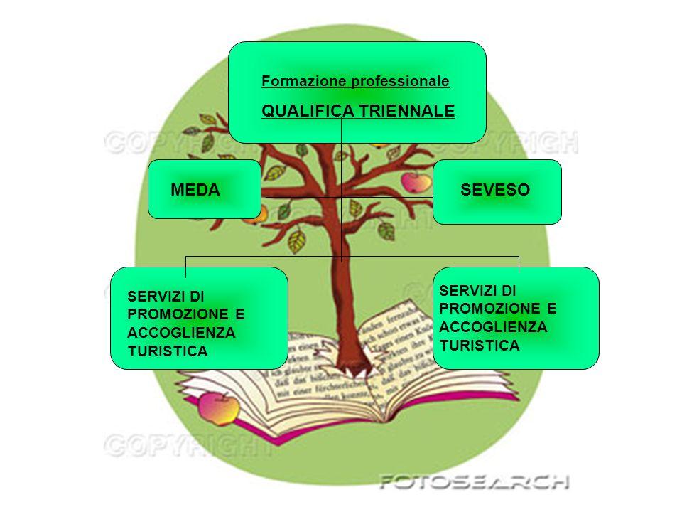 Formazione professionale QUALIFICA TRIENNALE MEDASEVESO SERVIZI DI PROMOZIONE E ACCOGLIENZA TURISTICA