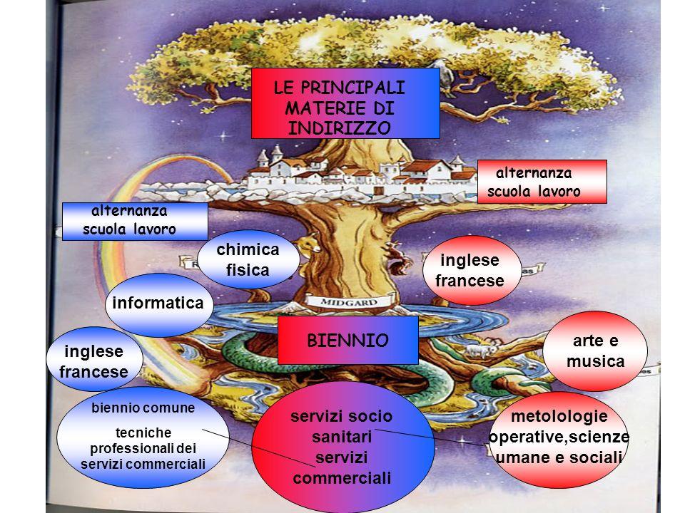 servizi socio sanitari servizi commerciali biennio comune tecniche professionali dei servizi commerciali inglese francese informatica chimica fisica m