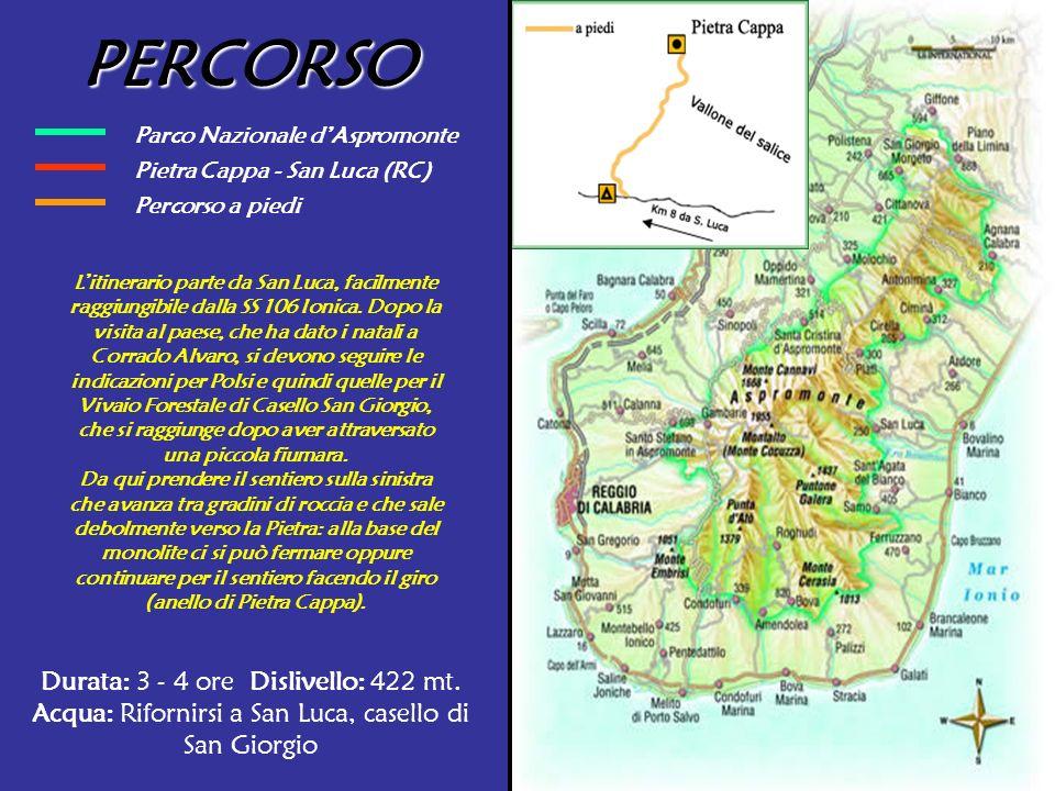 Parco Nazionale dAspromonte Pietra Cappa - San Luca (RC) PERCORSO Litinerario parte da San Luca, facilmente raggiungibile dalla SS 106 Ionica. Dopo la