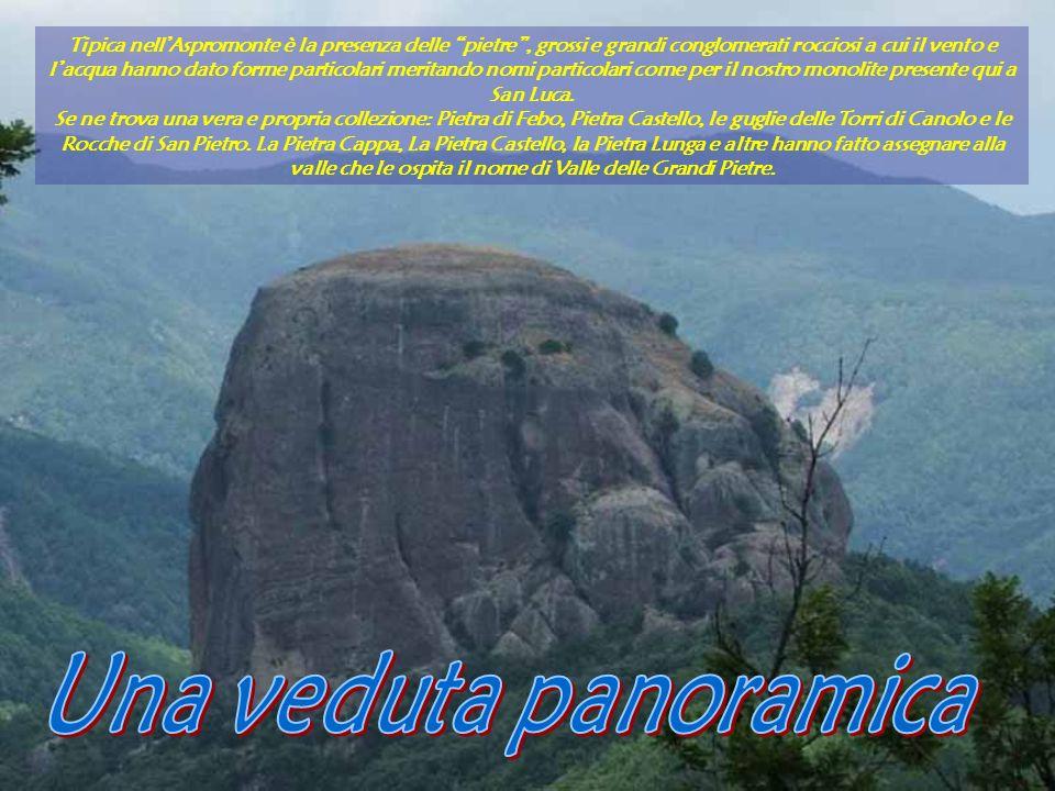 Tipica nellAspromonte è la presenza delle pietre, grossi e grandi conglomerati rocciosi a cui il vento e lacqua hanno dato forme particolari meritando