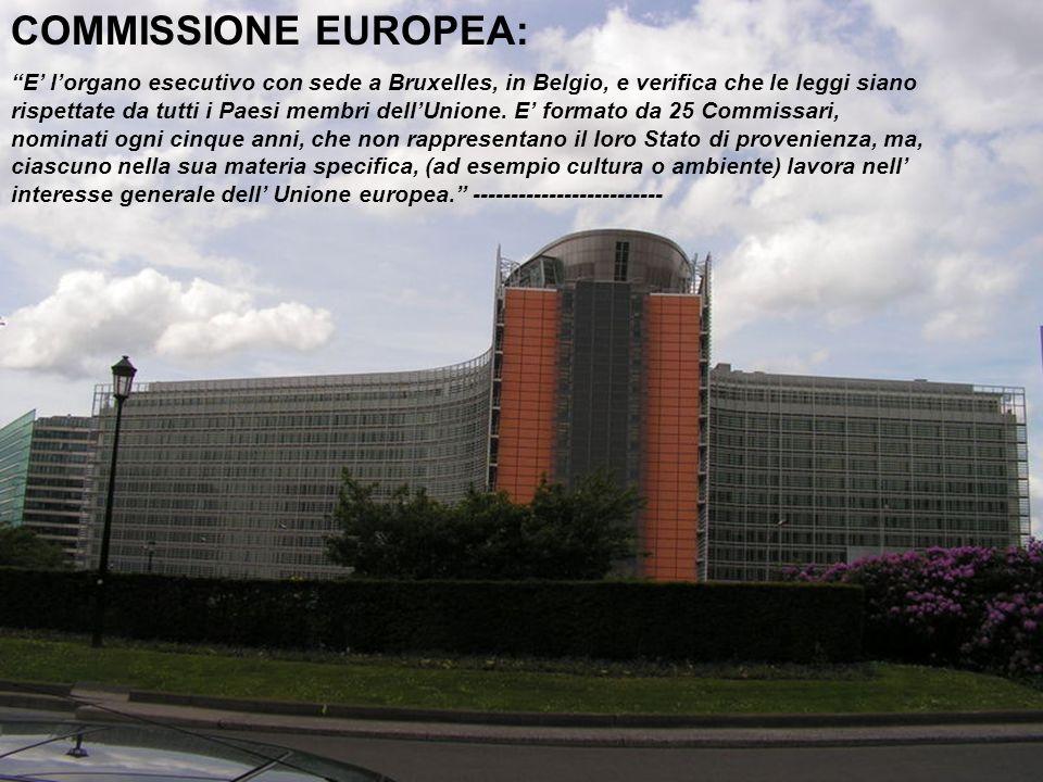 COMMISSIONE EUROPEA: E l organo esecutivo con sede a Bruxelles, in Belgio, e verifica che le leggi siano rispettate da tutti i Paesi membri dell Union